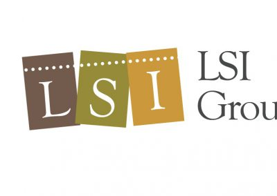 lsi-3